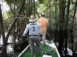 Fishing in the jungle 400x300pp