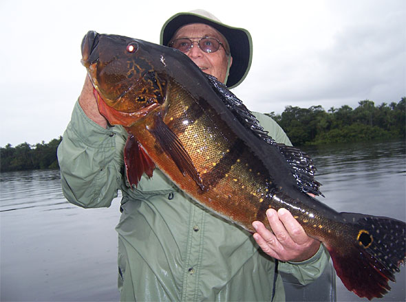 Gene with a 2012 Rio Negro 20 pounder caught while fishing with the awesome guide G!