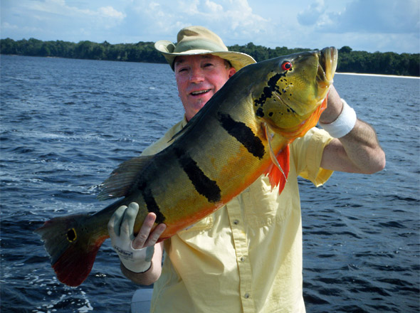 Rick catches a very colorful big peacock bass while fishing with Tony P!