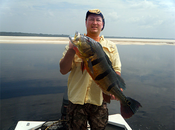 Tony lands a big peacock bass from another main channel sandbar while fishing the Rio Negro with Rick!